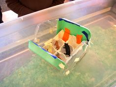 """""""Who Sank The Boat? Engineer a Boat to hold Toy Animals. Via My Early Childhood Reflections Capacity Activities, Steam Activities, Science Activities, Activities For Kids, Inquiry Based Learning, Boat Projects, Tot School, Boat Building, Some Fun"""