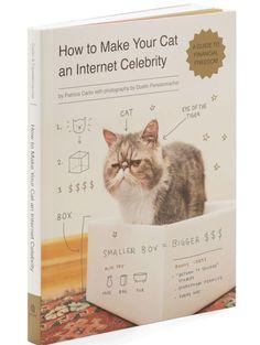 """Guide pratique """"Comment rendre ton chat célèbre"""" de Patricia Carlin"""