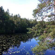 Fiskträsk, Sipoonkorpi, Finland