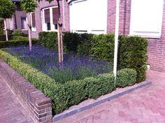 Jaren30woningen.nl | Voortuin inspiratie voor een jaren 30 woning