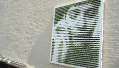 Green graffiti, mossspraying make the world green
