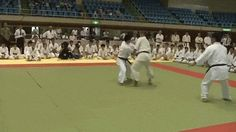 """chaosexmachina: """"Tomiki aikido, toshu randori. Brilliant throw by this aikidoka. Who knew you could pull off shit like this against a resisting opponent? """""""