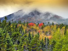 Things To Do - The Maine Highlands - Bangor, Katahdin, and Moosehead Lake - Maine Vacation Travel Planning