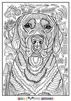 Free printable Golden Retriever