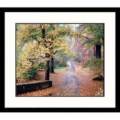 Great American Picture #Country Walk Framed Photograph #- LAN15-S-BK