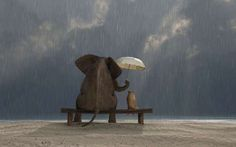 Canvas Prints Wall Art - Elephant and Dog Sit under the Rain Good Friends Are Hard To Find, Real Friends, Under The Rain, Losing A Loved One, Kahlil Gibran, Kindness Quotes, Human Kindness, Kindness Matters, Affordable Art