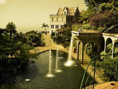 Funchal, Madeira, Portugal. I dreamed I was in heaven today.