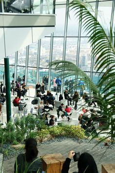 A fun FREE thing to do in London - visit the Sky Garden!