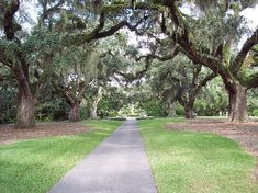 Brookgreen Gardens near Murrells Inlet, SC. One of the most beautiful places to visit in SC.