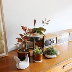 【楽天市場】よしおかれいさんの植木鉢 [M・3.5号鉢](第3便予約)(北欧 おしゃれ 観葉植物 多肉植物 植え替え シンプル 限定):ayanas