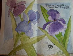 The Summer of Color Purple  by wildflowerhouse, via Flickr