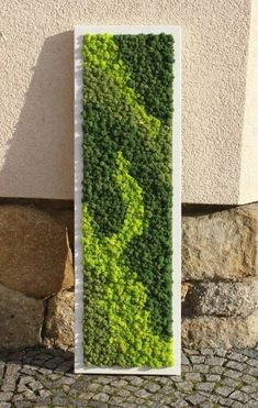 Precious Tips for Outdoor Gardens - Modern Moss Wall Art, Moss Art, Moss Garden, Garden Art, Plant Wall, Plant Decor, Indoor Garden, Outdoor Gardens, Verticle Garden