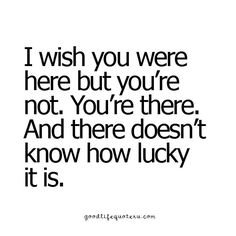 There doesn't know how lucky it is!