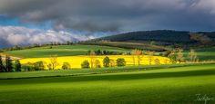 Scotland Slopes by Tashfeen Karamat Scotland, Golf Courses, Landscapes, Paisajes, Scenery