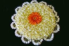 Flower Rangoli Designs