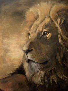 Löwe, leo, lion, лев, 動物, animales, animals, eläimet, tiere, Eugen Fass