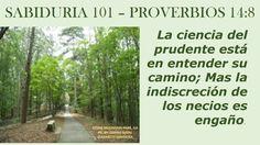 PROVERBIOS 14:8 - STONE MOUNTAIN PARK, GA - PIC BY: SARAHI NATAL