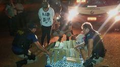POLÍCIA DO PARÁ                                 Ao Alcance de Todos!: POLÍCIA RODOVIÁRIA FEDERAL DO PARÁ APREENDE 25 QUI...