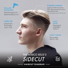 The Sidecut