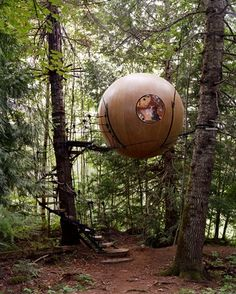 Sphere Treehouse   Vancouver Island, British Columbia http://media-cache5.pinterest.com/upload/81557443222022178_cLKEyqlp_f.jpg stephanieabney up a tree treehouses