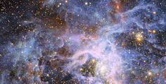VFTS 682, lonely star in the Magellanic Clouds