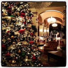 Photo by christophergurr. Lovely snowy Christmas tree!!! Bebe'!!! Elegant holiday decor!!!