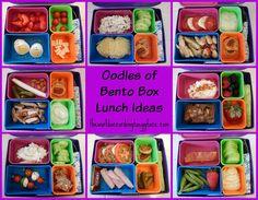 theworldaccordingtoeggface: Oodles of Healthy Bento Box Lunch Ideas