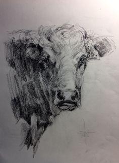 Dibujo a carbón de la cabeza de una vaca . Autor:  Francisco Javier Abellán