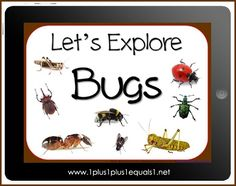 Let's Explore Bugs eBook...Subscriber Freebie through June 15, 2012 from www.1plus1plus1equals1.net