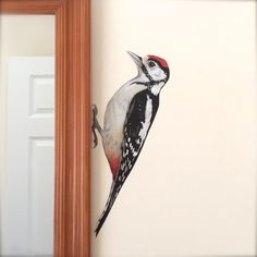 Walter the Greater Spotted Woodpecker has been produced as a print, actual size from my original painting on to white backed RE-STICKABLE Removable Wall Decals, Vinyl Wall Stickers, Vinyl Wall Art, Spotted Woodpecker, Tree Wall, Painting Techniques, Beautiful Birds, Wall Murals, Original Paintings