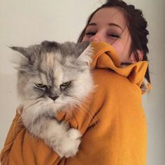 Emma Verde, Animal Memes, Youtubers, Dog Cat, Poses, Cute, Instagram Posts, Vsco, Food