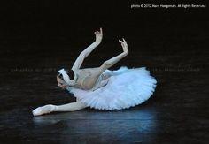 Svetlana Zakharova, Dying Swan