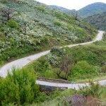 Winding Highway, east, Molinaseca, Spain, Camino Frances