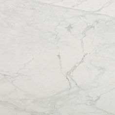 Calacatta Borghini full slab - Arizona Tile for kitchen