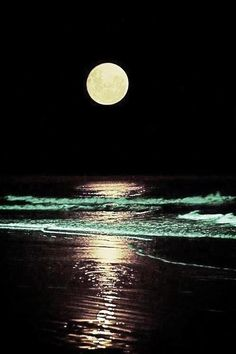 moon and ocean share moments