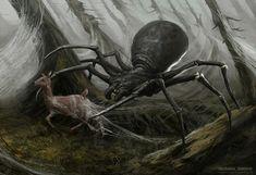 Spider 01, Sherbakov Stanislav on ArtStation at https://www.artstation.com/artwork/24GAA #Spiders