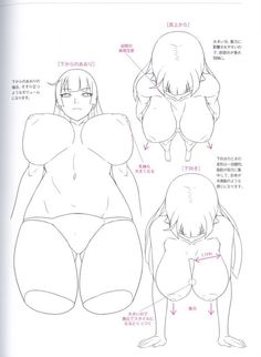 """Here's another outstanding """"How to Draw"""" book that teaches you the subtle art of how to perceive oppai -- female breasts -- so that you can create illustrations of them on paper or in a computer. Many kinds of breasts are studied in this great book, from kyonyu (giant breasts) to nami (average sized ones) to the all-important hinnyu (flat chests, which are Justice). A super book for up-and-coming artists, whether you're creating hentai art of something more mainstream."""