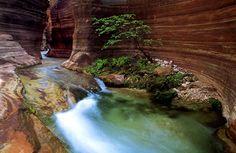 inside_grand_canyon.jpg (500×325)