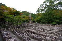 Adashino Nenbutsuji Temple in Kyoto Stone Statues, Kyoto, Temple, Vineyard, Travel, Outdoor, Outdoors, Viajes, Temples