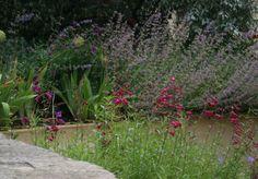 Urban garden design in Woodstock by Nicholsons of Oxfordshire