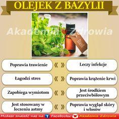 Korzyści zdrowotne olejku z bazyli - Zdrowe poradniki Osho, Fitness, Keep Fit, Rogue Fitness