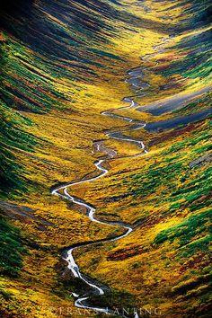 Wrangell-St. Elias National Park, Alaska | Frans Lanting