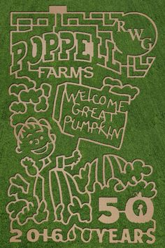 Peanuts-themed corn maze for Fall 2016 @ Poppell Farms pumpkin patch Details: http://www.southernmamas.com/2016/peanuts-themed-corn-maze-for-fall-2016-poppell-farms-pumpkin-patch/