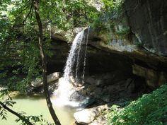 2. Tunica Hills State Wildlife Management Area