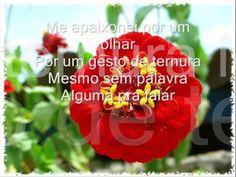 ▶ Oswaldo Montenegro-Quando a gente Ama - YouTube