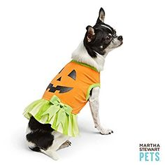 Top Paw™ Pet Holiday Reindeer Costume | Costumes | PetSmart | Pet ...