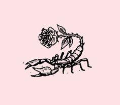 scorpirose