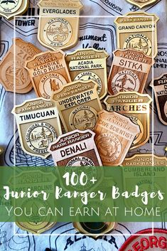 100 Junior Ranger Badges you can earn from home! Kids Activities At Home, Girl Scout Activities, Activities For Kids, California National Parks, California Travel, Girl Scout Juniors, Home Economics, Kids Learning, Early Learning