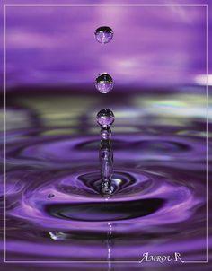 Violet drop ( Explored )