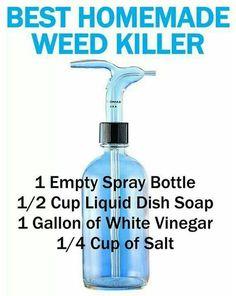 herbicide for paver cracks: Blue Dawn Vinegar with high acidity (20%) and Salt